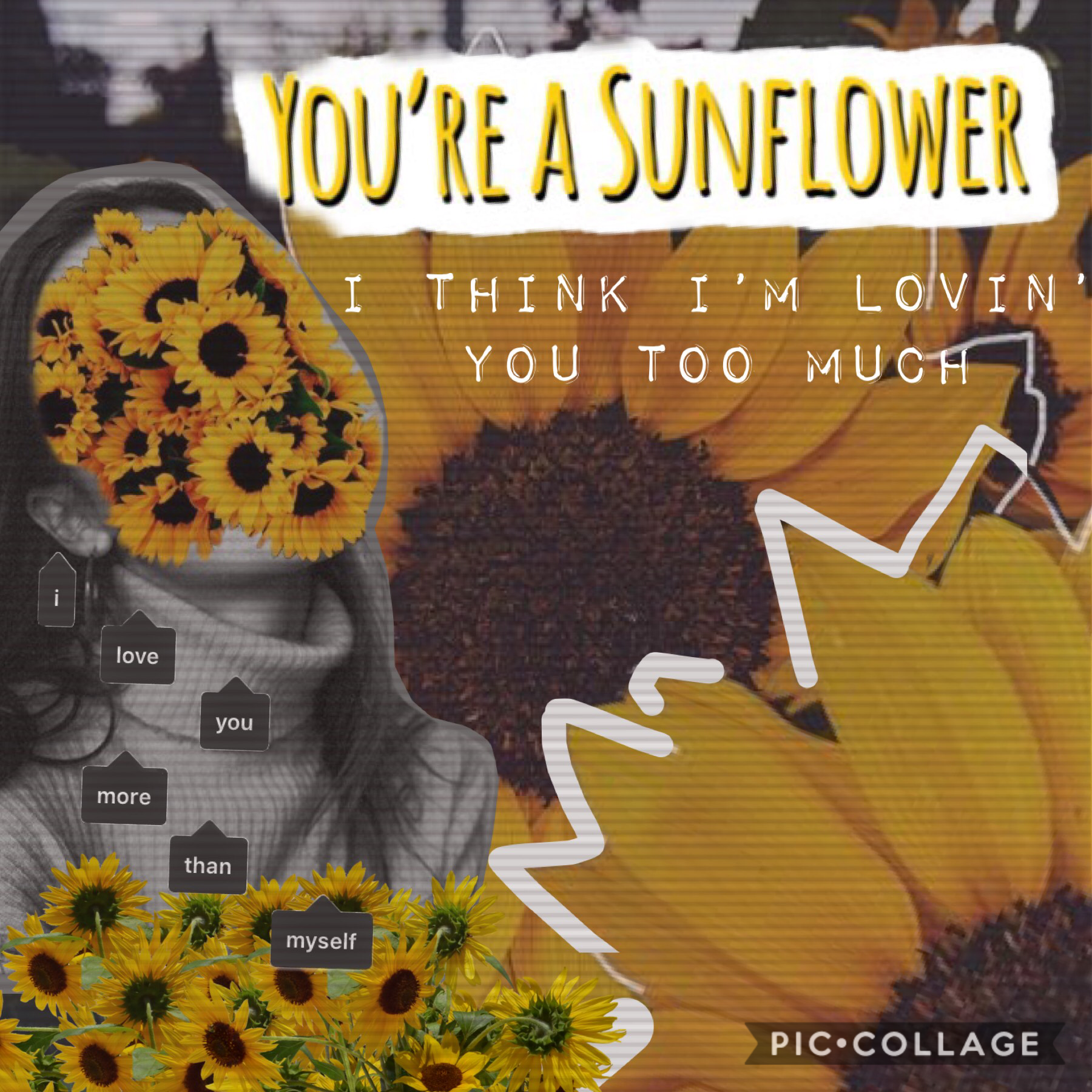 Collage by Sunfl0wers