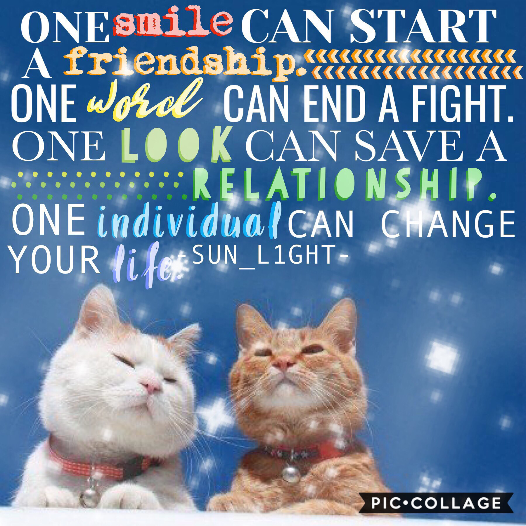{✨ we all have those bffs who will always be there for you ✨} 🌿a little free time collage from late last weekend that I didn't get to post until now😂🌿I really don't know what this is but the pic is cute and so was this lit quote so yee🥰 I swear the LAST r