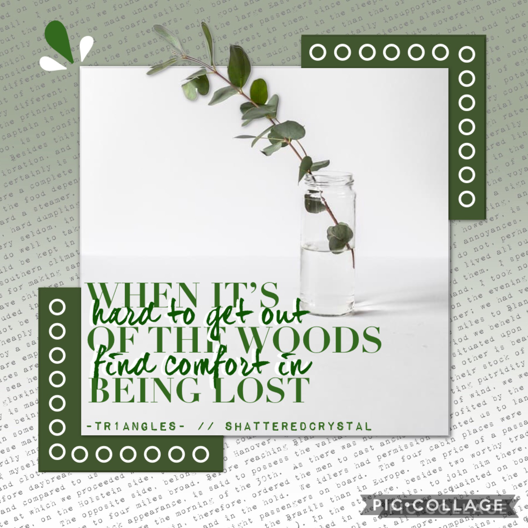 🍃 COLLAB WITH 🍃  ShatteredCrystal!! She's an amazing collab partner and super talented! Go follow her :) I did the text and she chose the quote and background! QOTD: Green thumb? AOTD: I like plant... but they don't like me ;-;