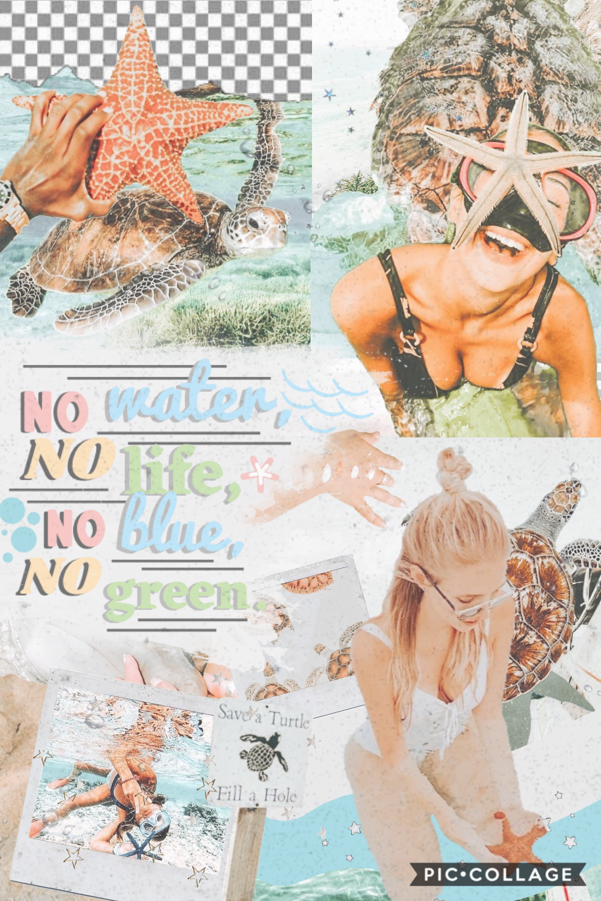 how's everyone doing? i love the earthy theme of this collage!! 🌿🌊🐢 now i'm thinking of writing a summer bucket list!! ☀️🌻🌼 also, have i mentioned before how i much i love cruising!! 🛳🚢⚓️ i've been on royal caribbean's allure of the seas!! third biggest i