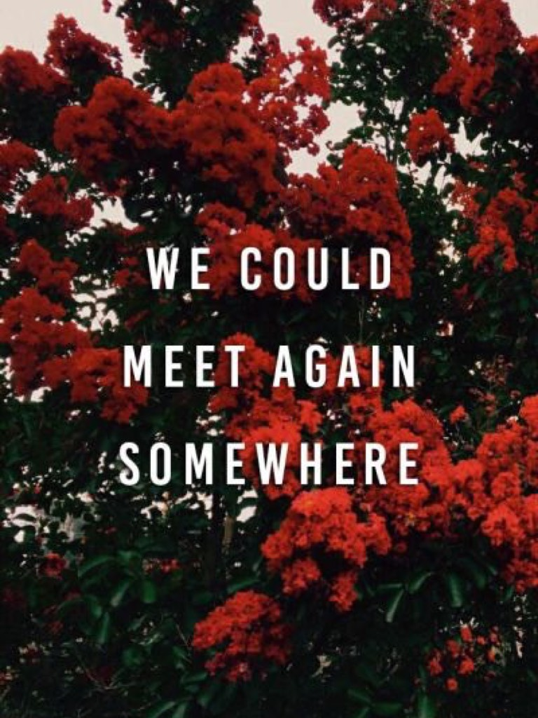 🌹SOMEWHERE FAR AWAY FROM HERE🌹