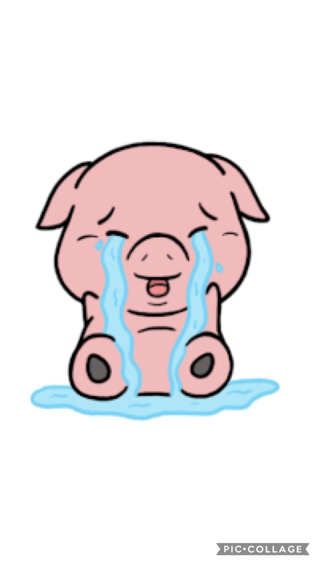 будут картинки плачущей свинки энергетическое значение превосходит