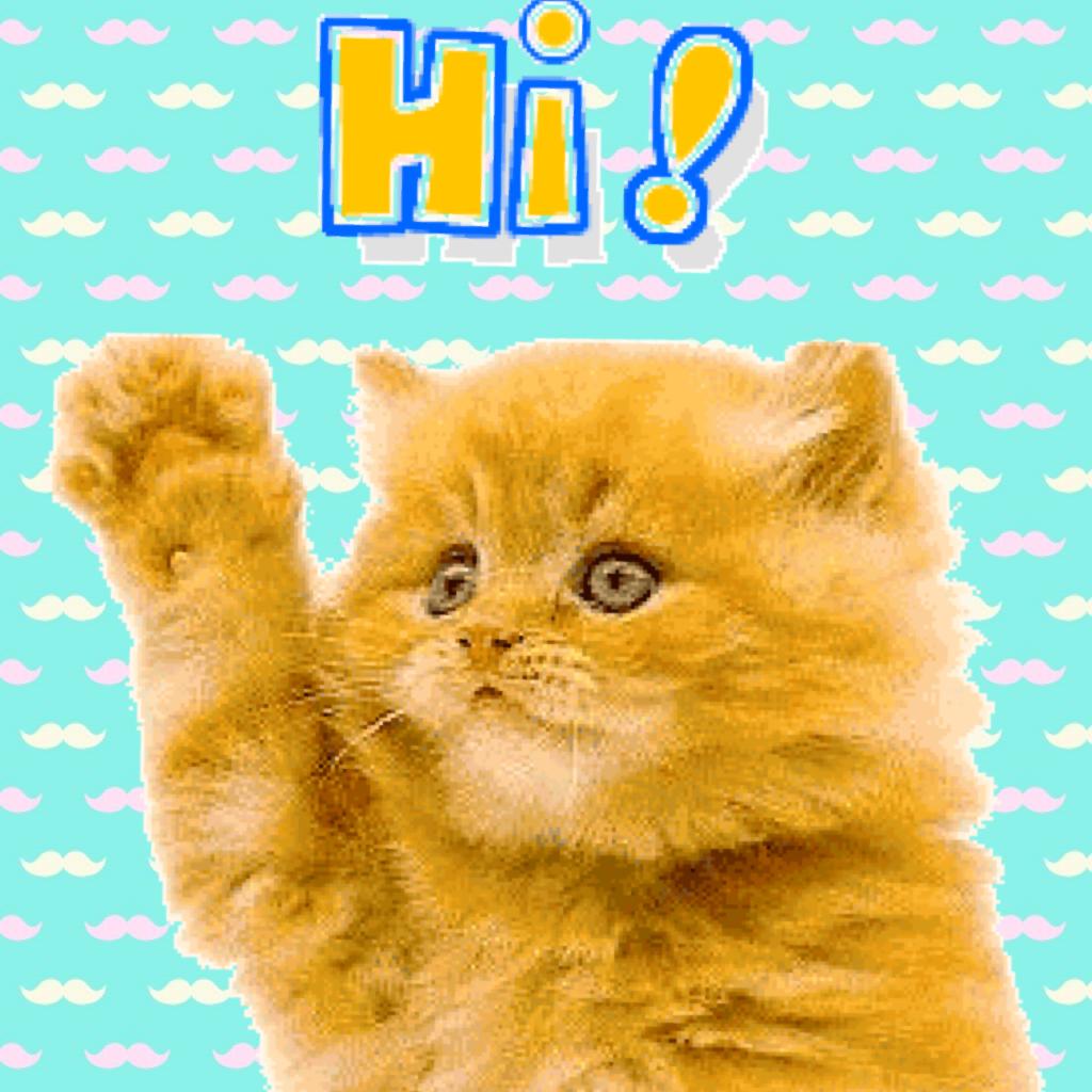 Открытки привет коты, открытки уфа