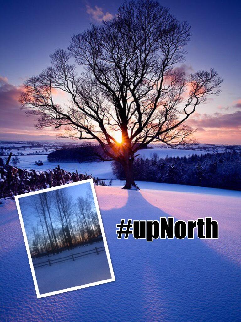 #upNorth