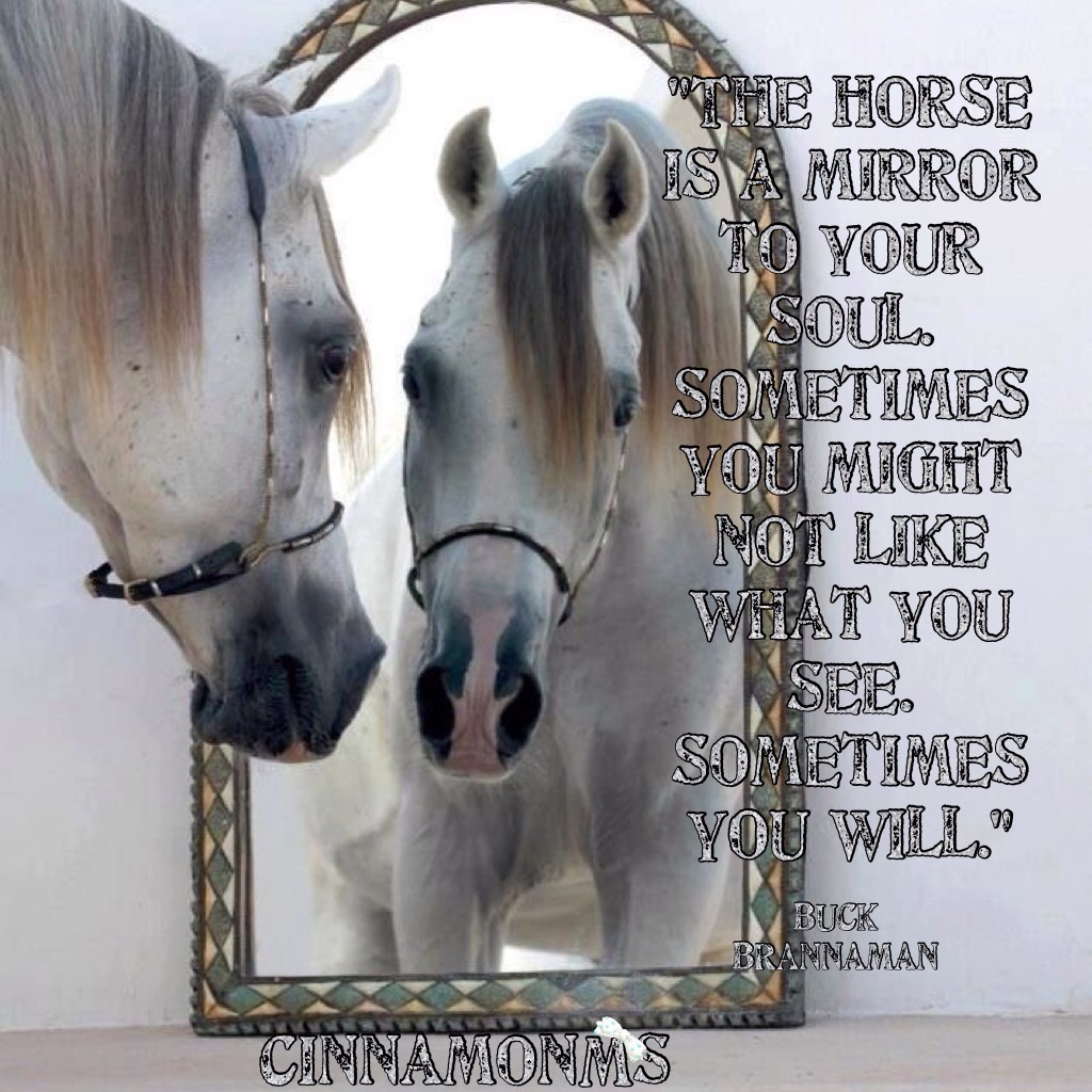Horse, A Mirror To Your Soul