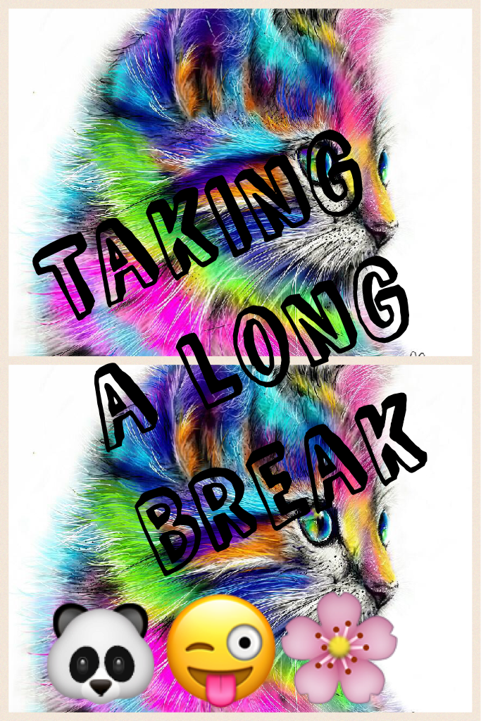 Taking a long break
