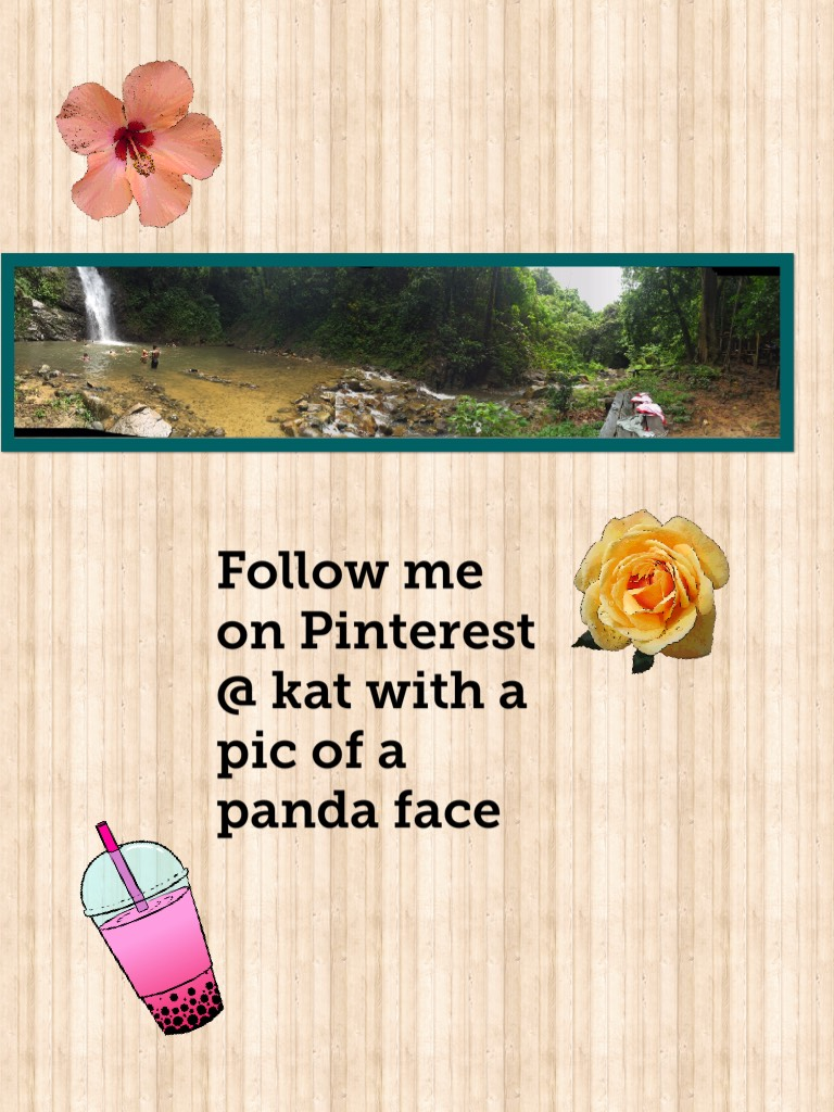 Follow me on Pinterest @ kat with a pic of a panda face