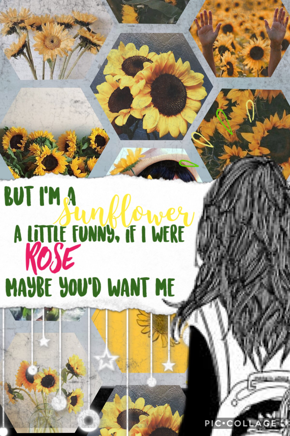 🌻My new favorite song 🌻  Rate out of 10. I'm really proud of this collage what do you think 🌻🌻🌻🌻🌻
