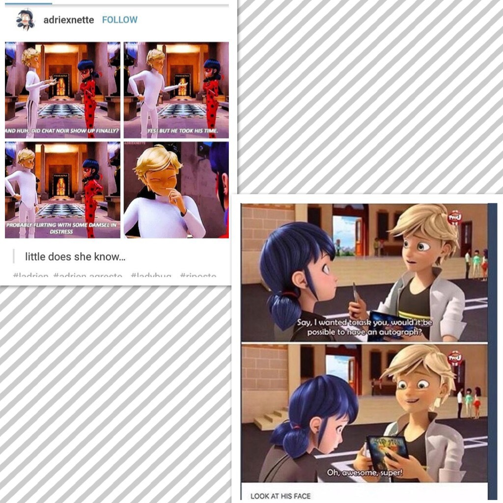 Is it just me or does Adrien like Mari and Ladybug