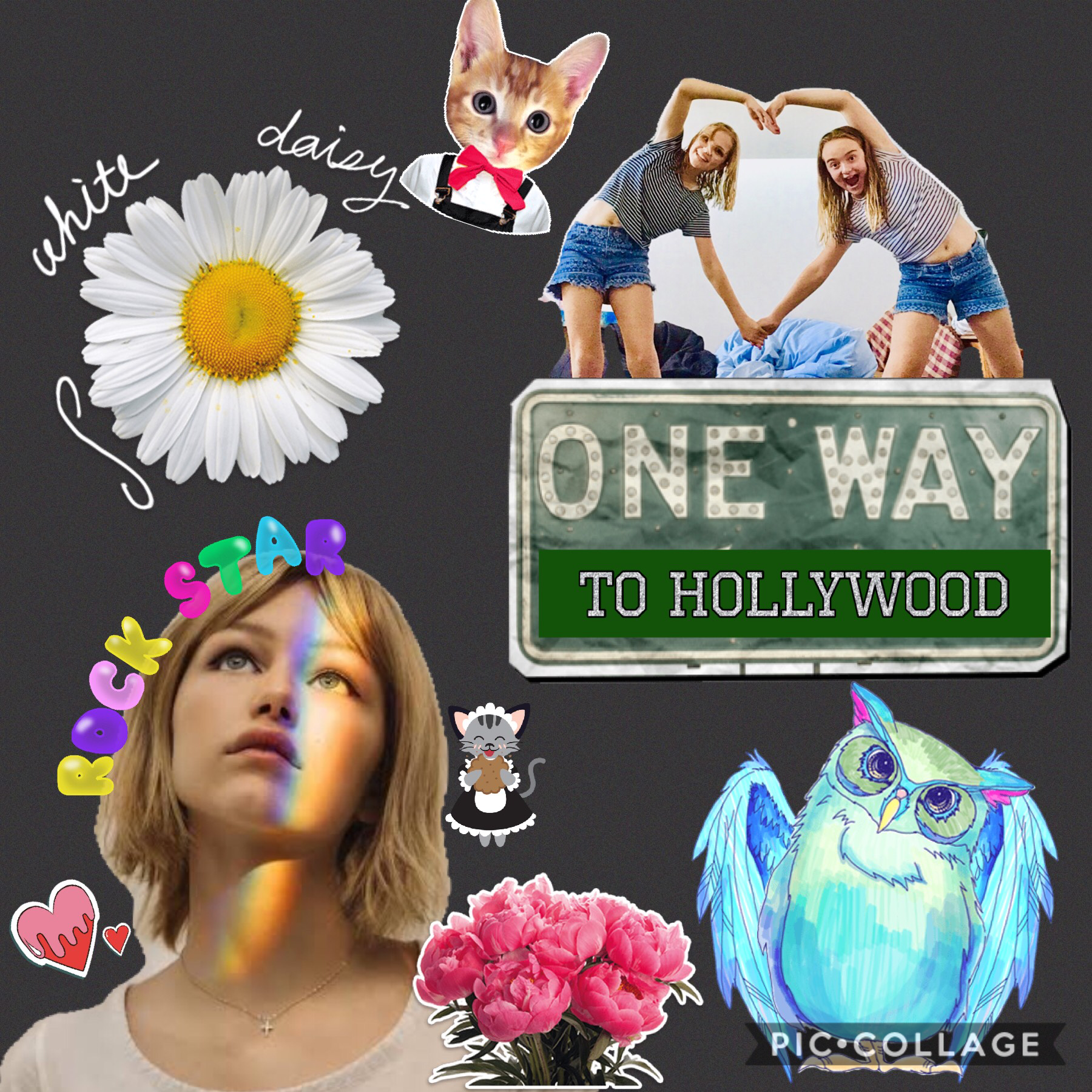 Collage by lucy192837465