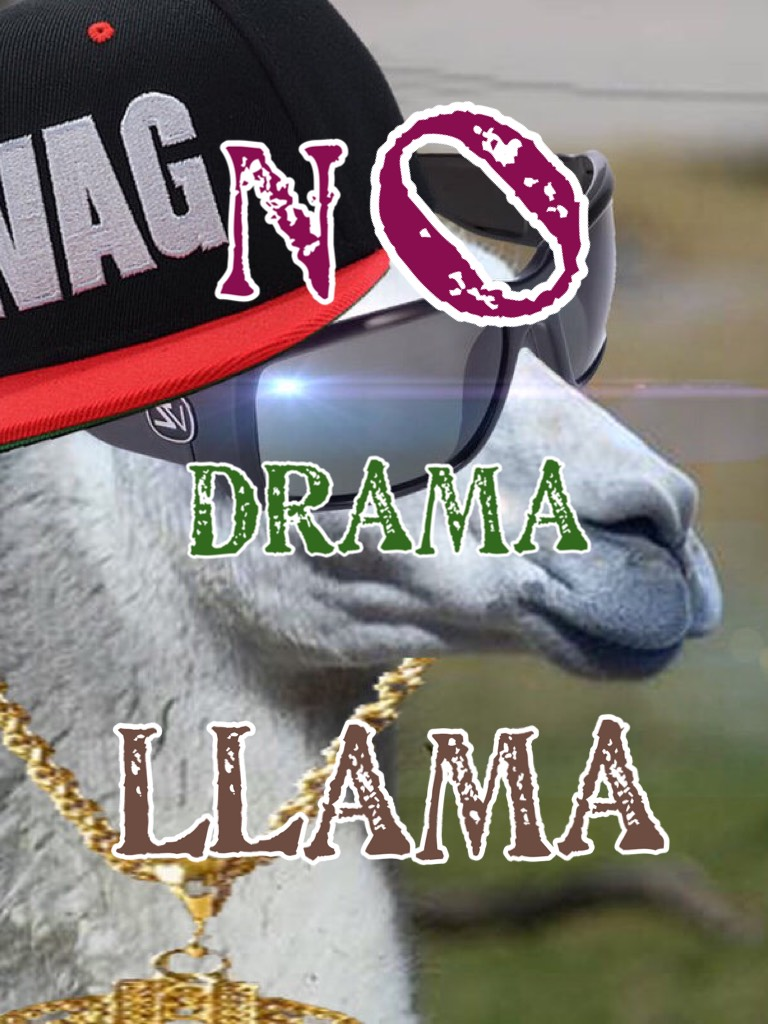 #LlamaSwag! ~TAP~ My first collab!! With? Xx_Nike4ever_xX FOLLOW HER