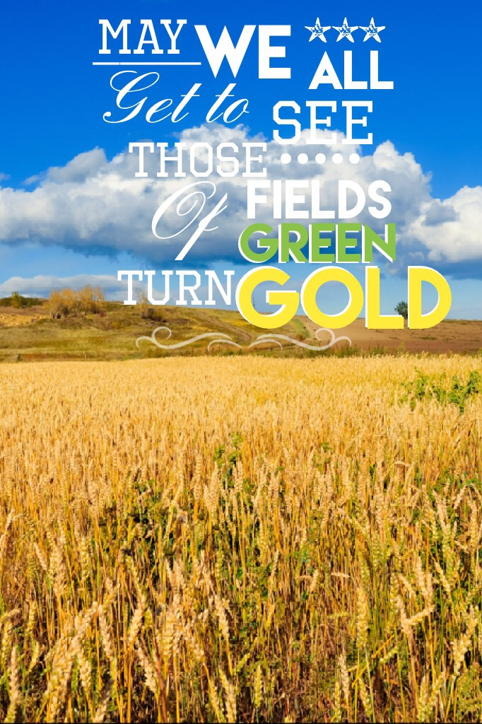 """~tap~ """"May We All Get To See Those Fields Of Green Turn Gold""""-Florida Georgia Line"""