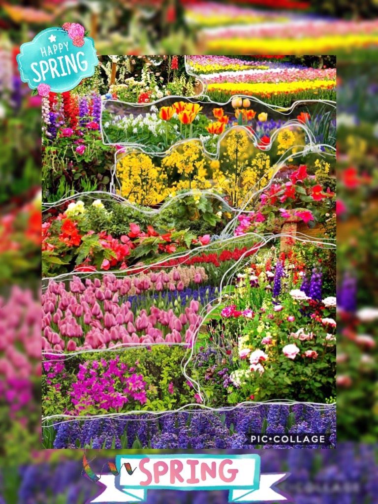 💐 Tap 💐 ~24-3-18~ This was made by cutting pictures and combining them. 🌼 Happy spring! 🌸