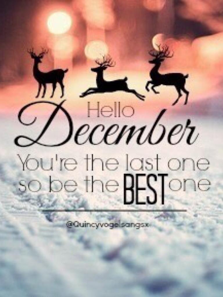 HELLO DECEMBER!!🎄