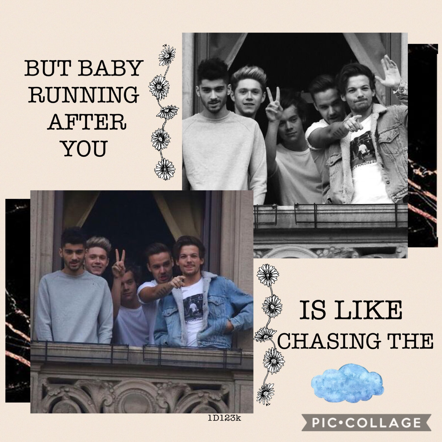 So i've been really inspired lately, its nit the best but 🤷🏻♀️😁 what 1D member should be on my next edit!?🙂💕