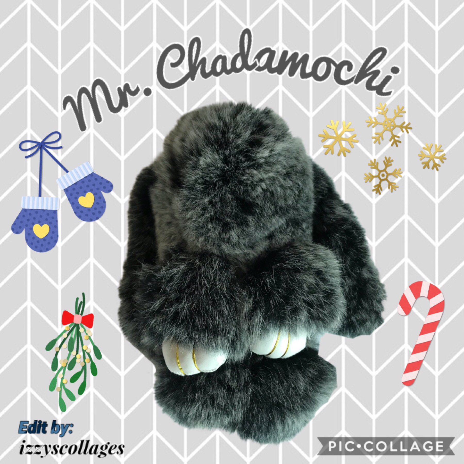 Meet Mr. Chadamochi! My bunny! Credit to izzyscollages! You should definitely check out her amazing account! Thx!