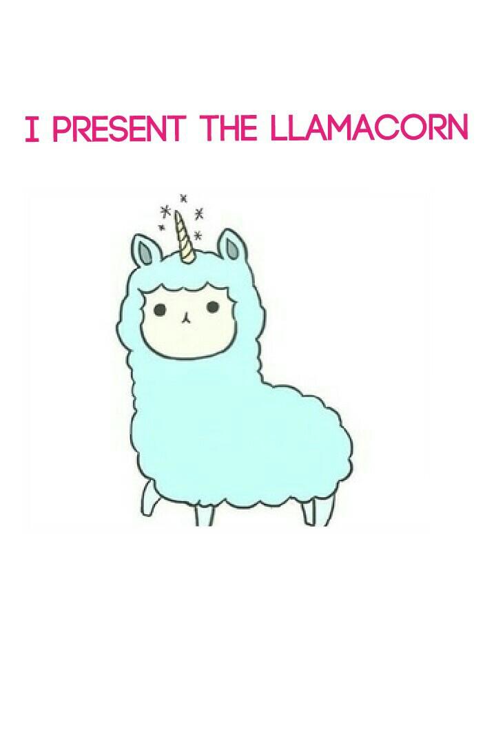 I present the llamacorn