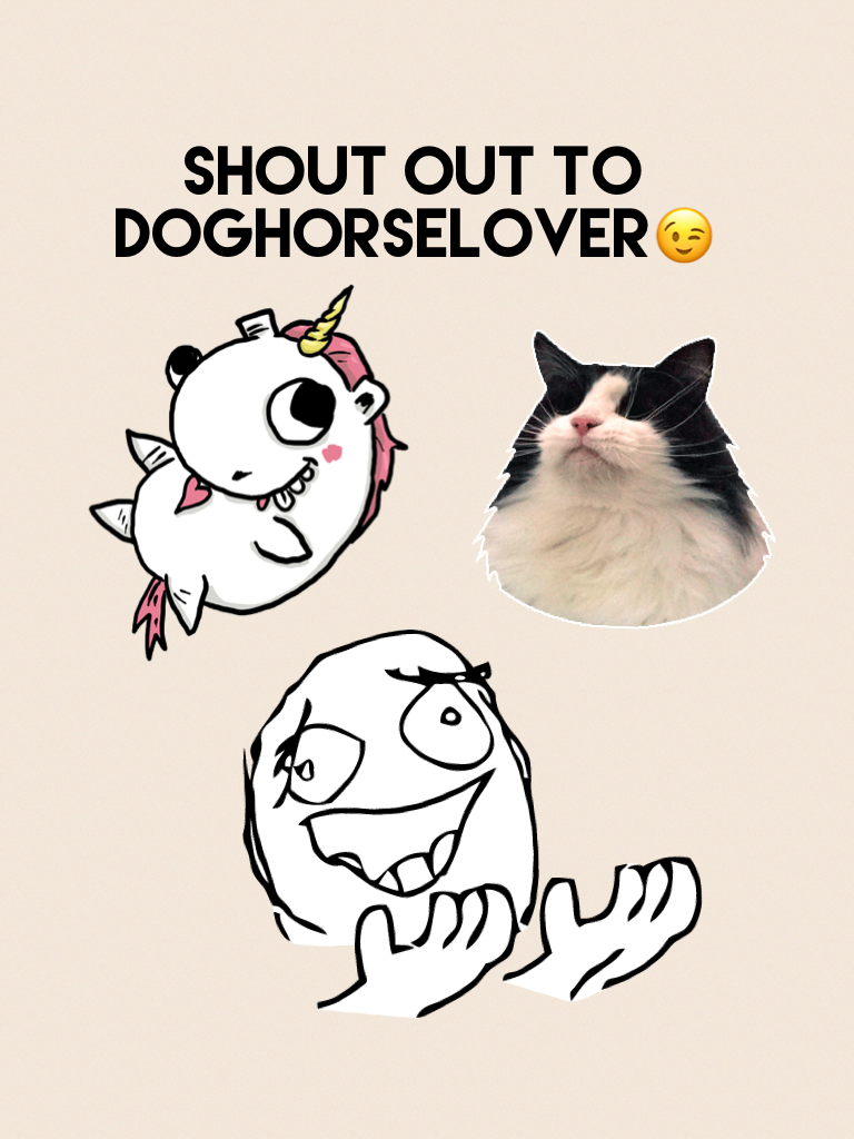 Shout out to doghorselover😉