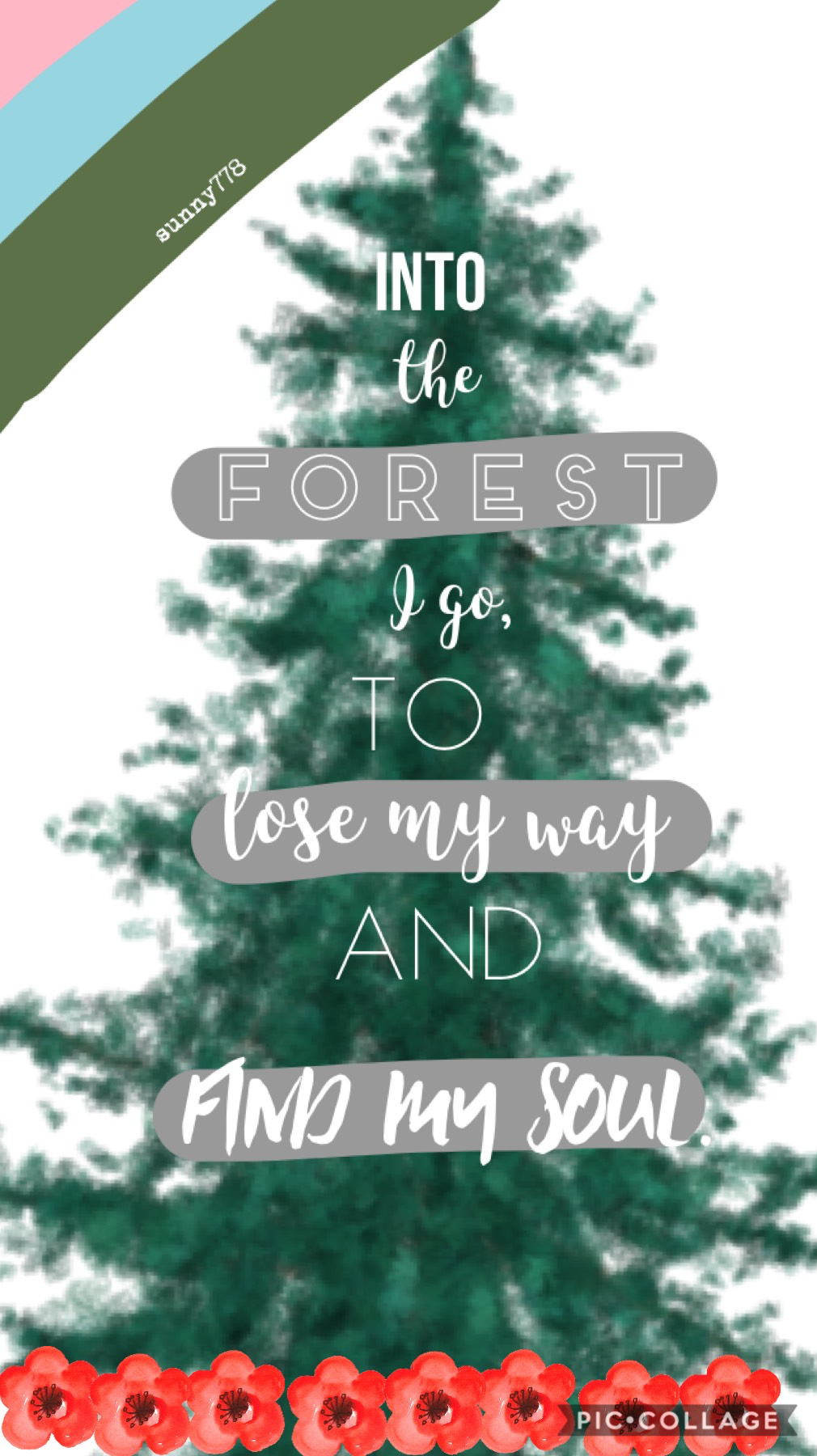🌳3/12/18🌳 - a beautiful quote I saw on a drink bottle, so I decided to make a post out of it! I literally threw this together in 5 mins, so not my best ... but if you like it hit the ❤️!!   22 days till Christmas 🎄!