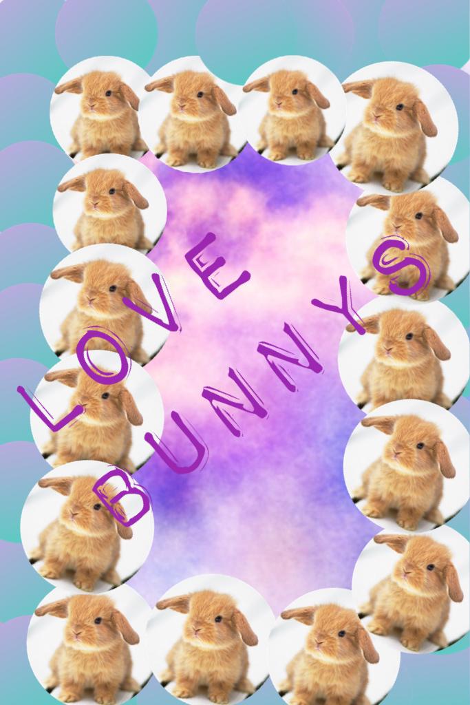 Love bunnys