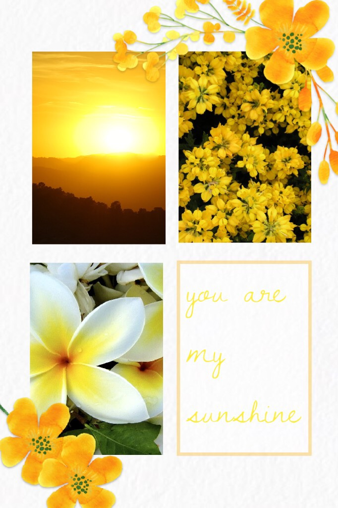 you are my sunshine // rate?? // what are your plans for the 4th of July?