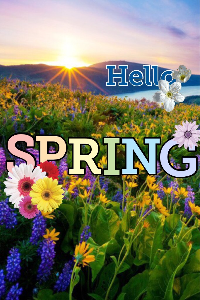 Hello spring!,,a little late..oh well,hope u like my collage