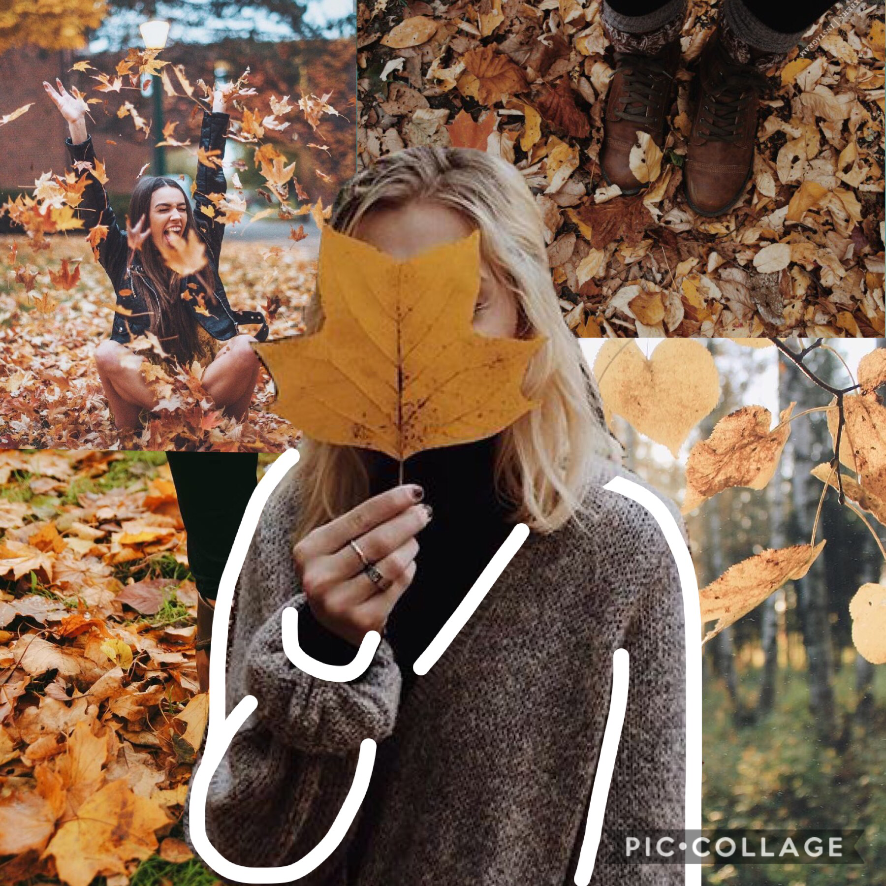 fall 🍁 🍂🐿