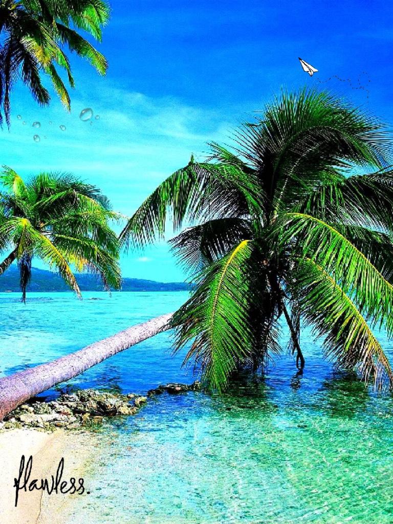 Flawless ~ Vanuatu 🥰