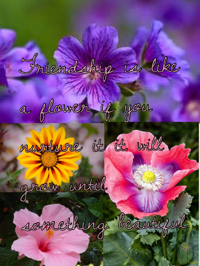 Friendship is like a flower if you nurture it it will grow until something beautiful