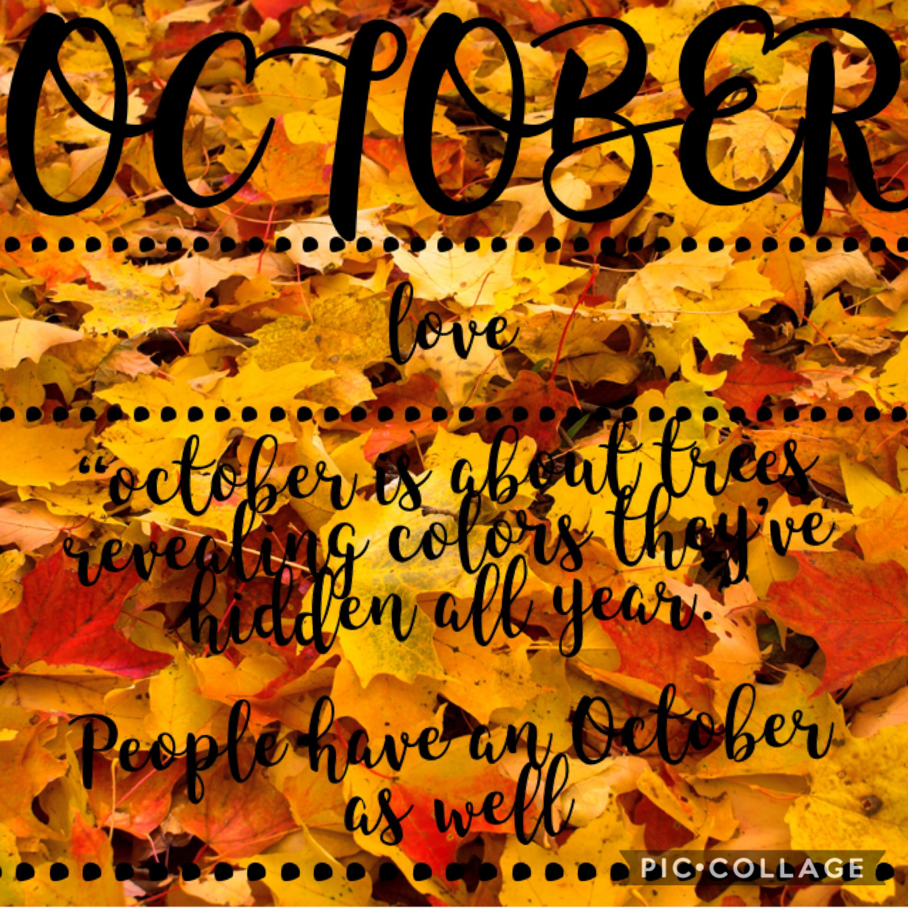 It's October!! I hope you all have an amazing month!❤️