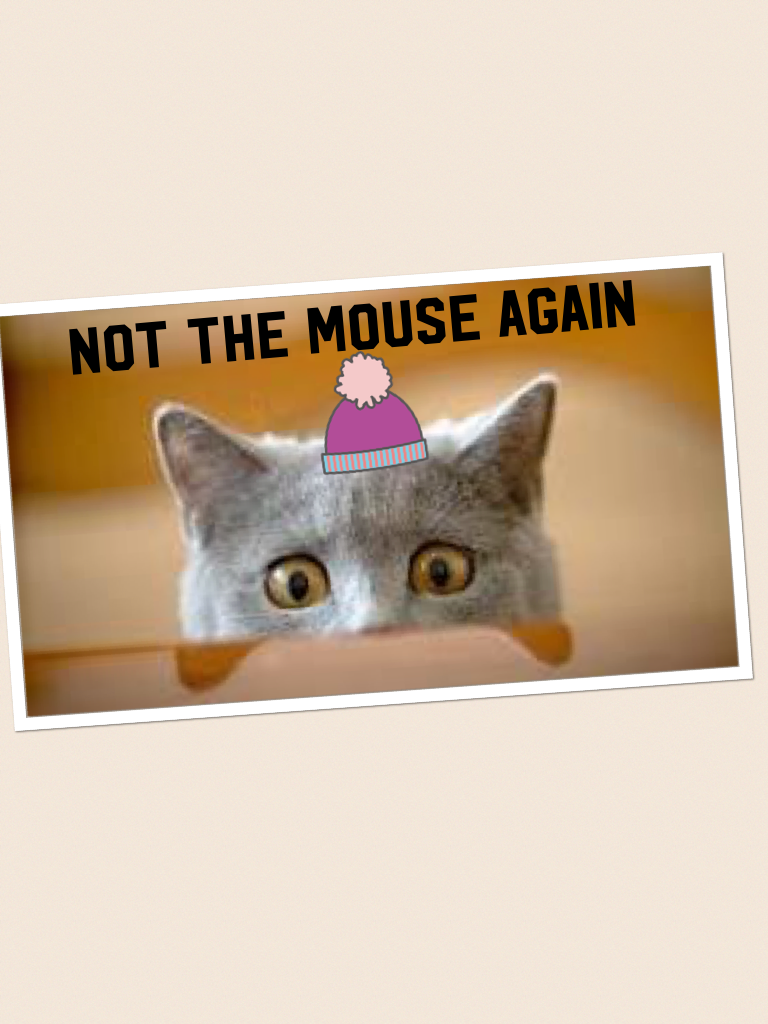 Not the mouse again