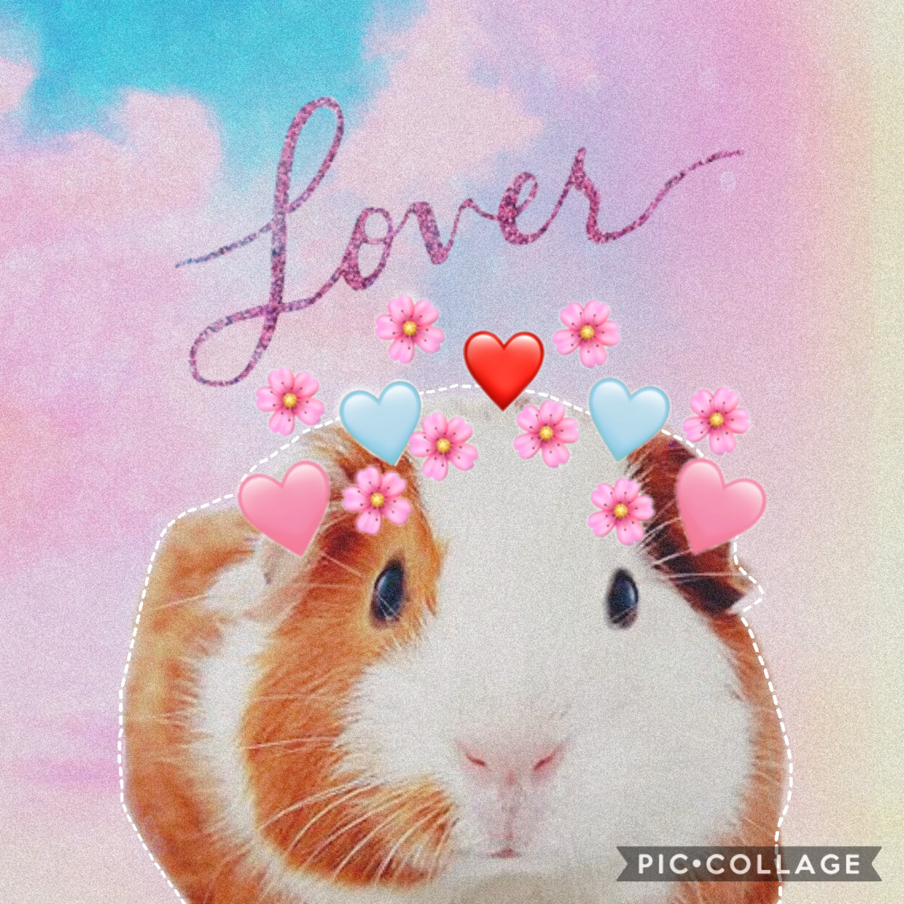 🥰 Thought this was cute 🥰