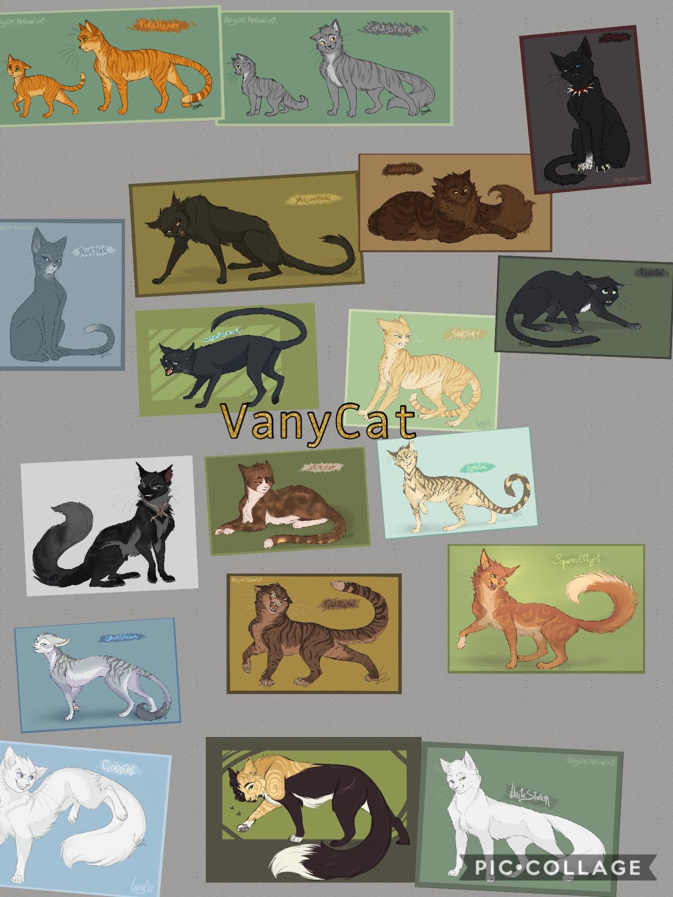 VanyCat!!!