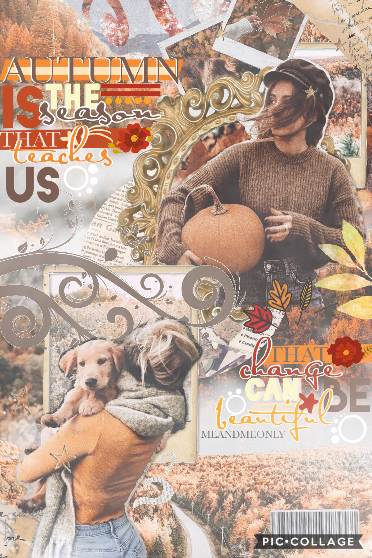 entry to @piccollage's fall contest🍁🌾 sorry for the inactivity🍊ee spring is here🌸🌻 tell me about the most exciting part of your day? remember you are all such beautiful beings🤩👏