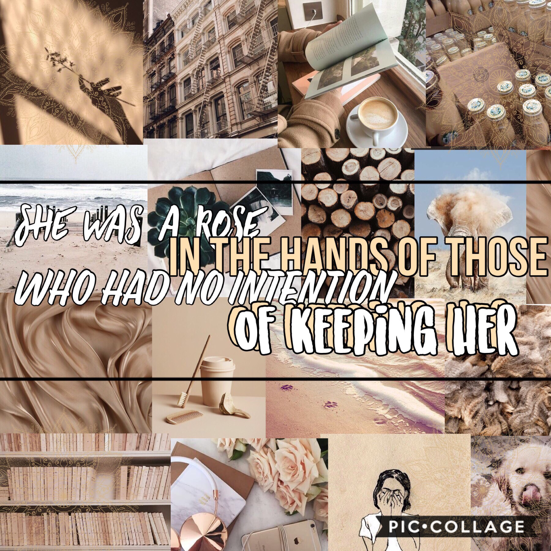 Hey guys!!!!❤️🦄😍😘🥳😜😊I tried out a different style on this one, I hope you like it!❤️❤️❤️❤️I really like the quote though!😁 QOTD: Do you like beige??😝 AOTD: Kind of!☺️