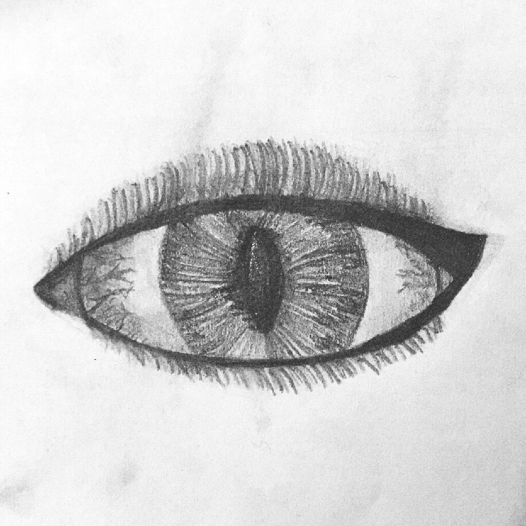 El Ojo del Tigre// I drew this for a Spanish test