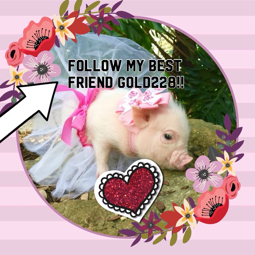 Follow my best friend gold228!!