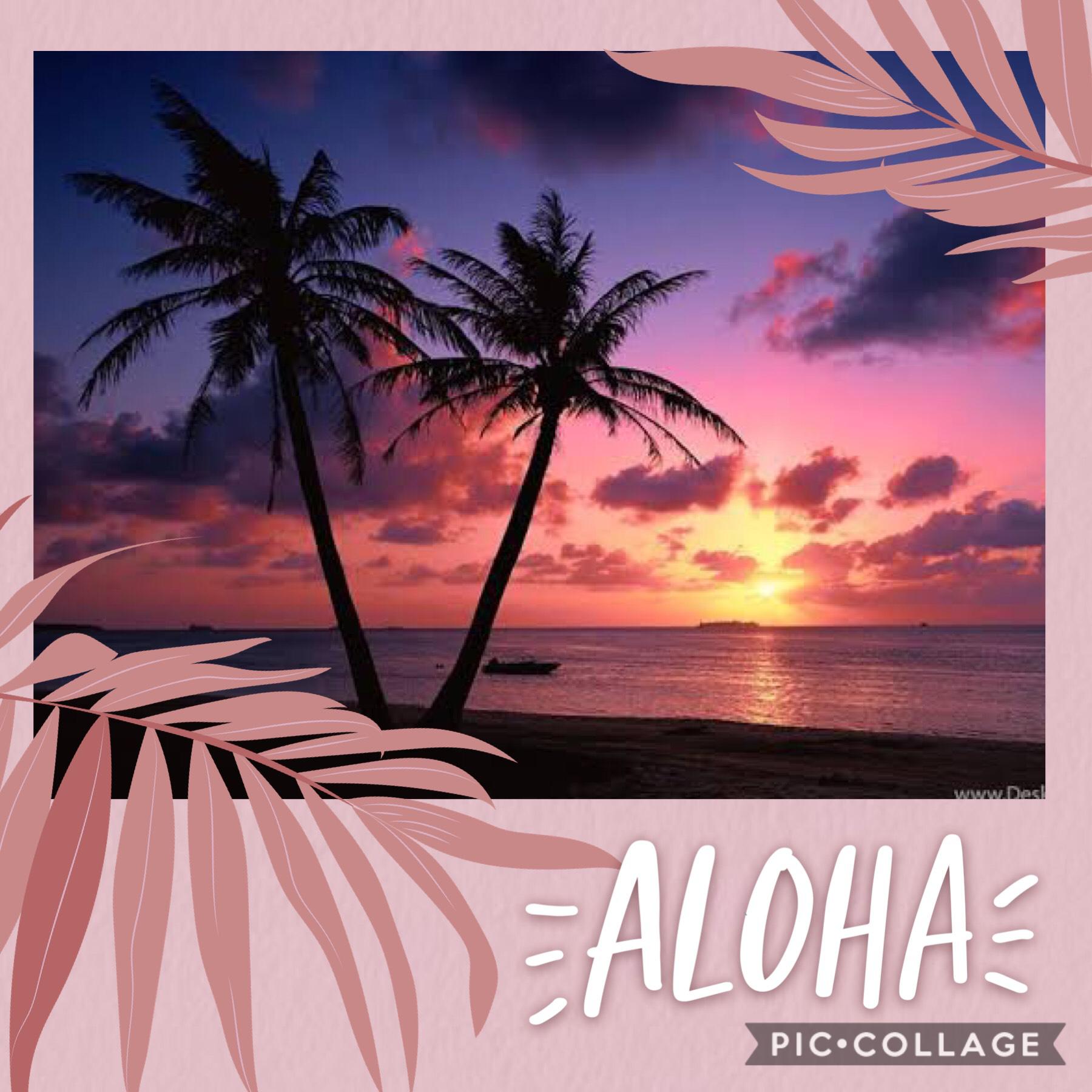 Aloha 😜