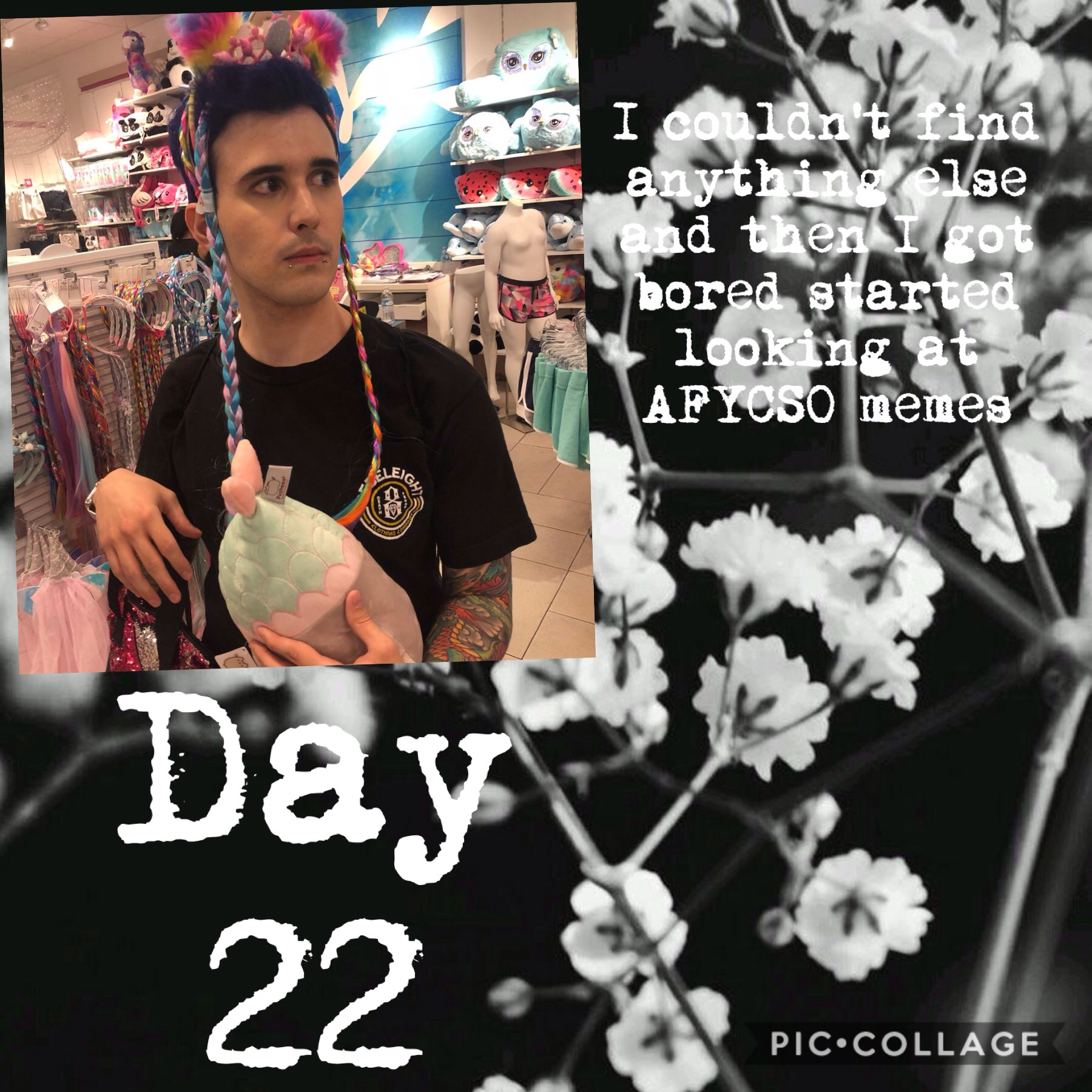 Day 5/27/19