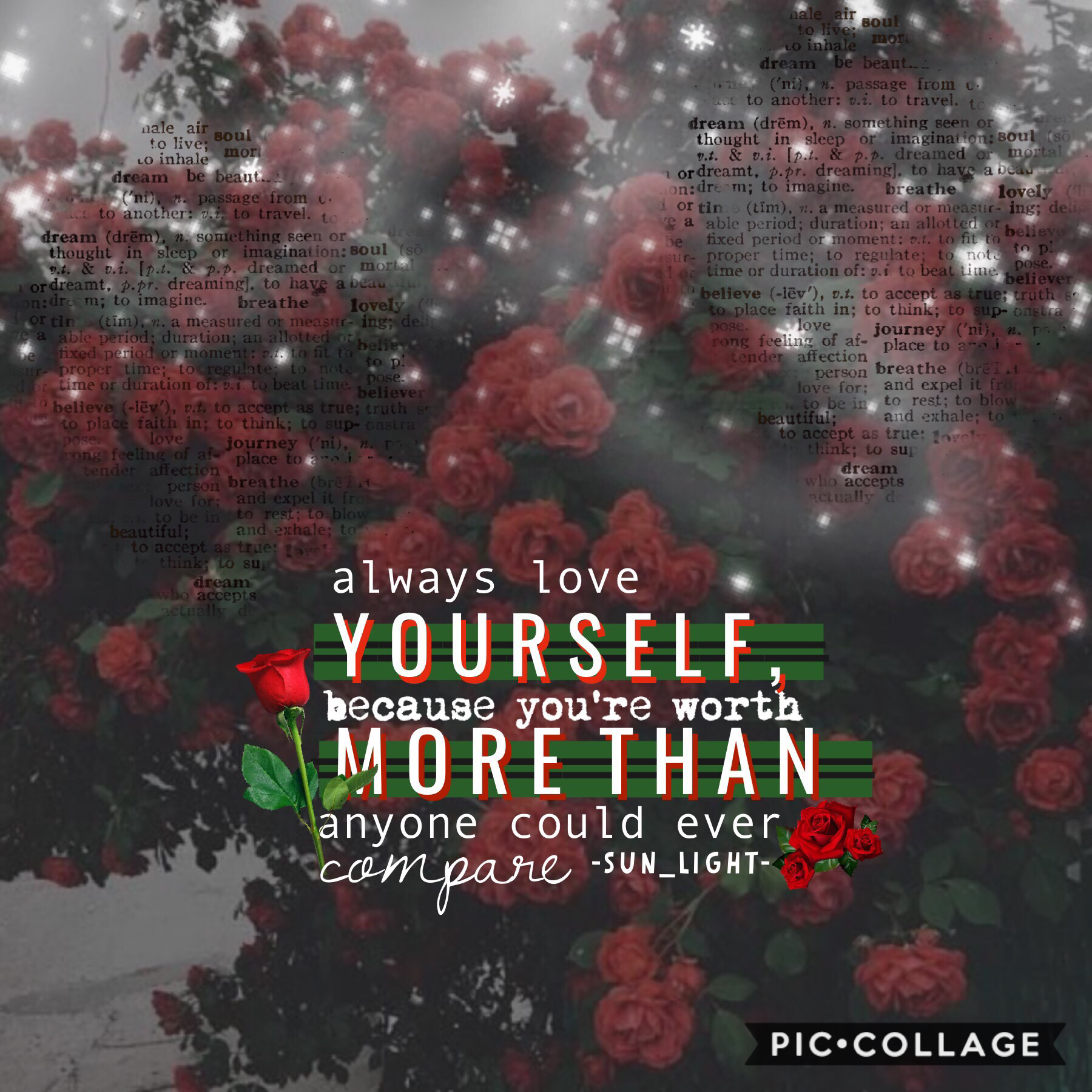 🌹🌿happy (late) valentines day all my people!🌿🌹 take a rose and put up your hand if your single but you still love yourself!💐👌....🌹🙋♀️😂...*me by myself😭😂* totally inspired by @dancingflowers! go follow her if you haven't already!💖 #selfloveisimportant #wh