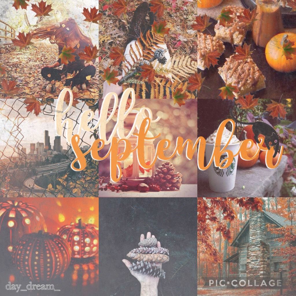 [tap for a pumpkin]   there you go your pumpkin >>>>>>>🎃🎃🎃🎃  YAYYYY AUTUMN IS HERE!!!!!!!!!!! (okay I'm like 4 days late but....... oh well 😂😂) and yeah it's 4 days bc.... ITS 2:30 AM RN AND I NEED TO GO TO SLEEP but I can't 😊  also does anyone want the l