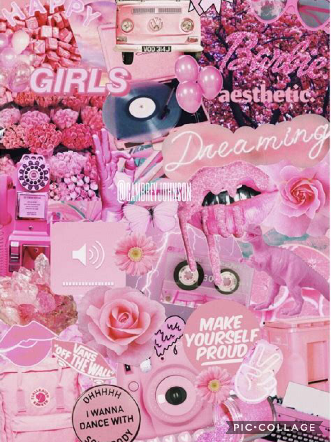 P I N K 👄👅🧠👩🏻🎤💅🏼👚👛🐽🐷 recommend colours!