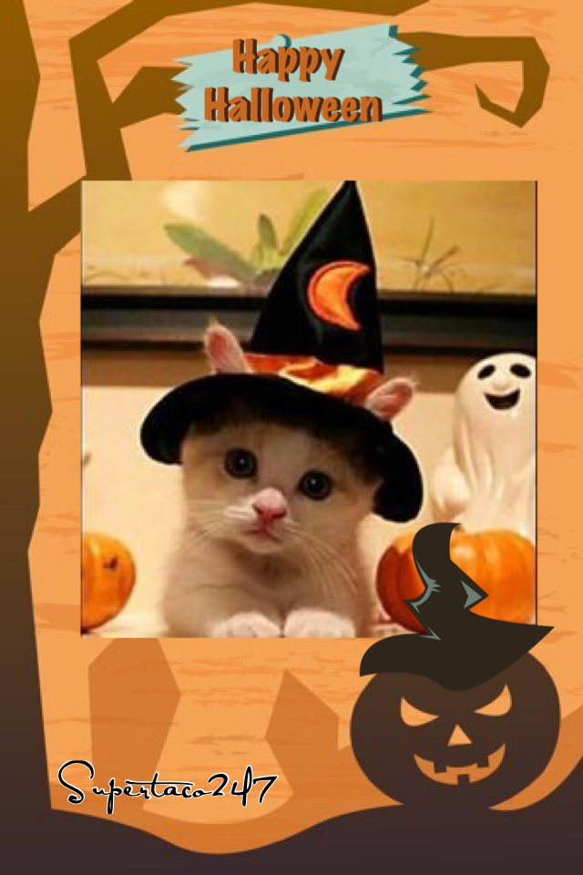 Happy Halloween!!! 🎃
