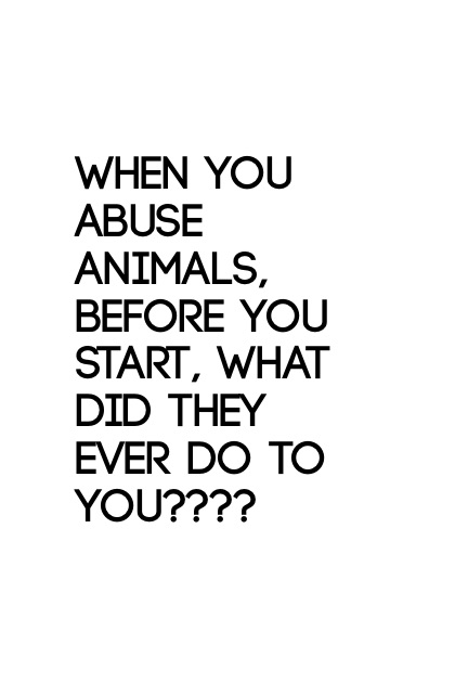 When you abuse animals, before you start, what did they ever do to you????
