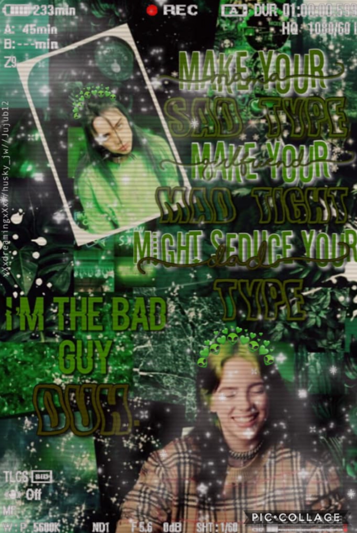Omg!! I think this turned out really good!! This is for day-light-dreams celeb games contest!! Comment (Billie Eilish team) if we girls did a fantastic job!! And my huskies, u can comment too!! Go follow day-light-dreams too!!😋💖👋🏼