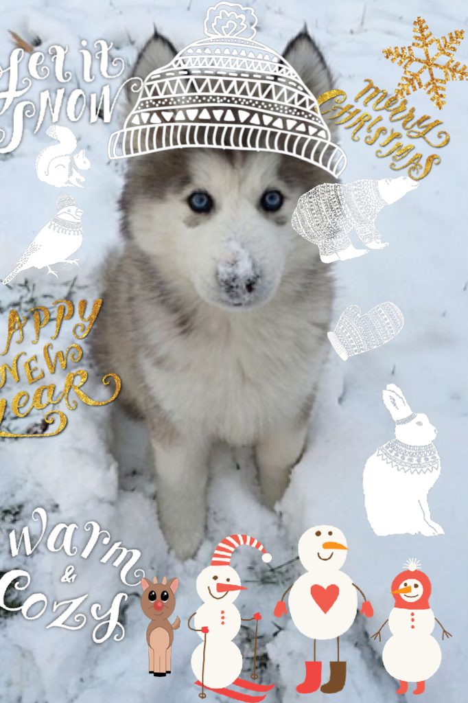 Winter is so cute ❄️