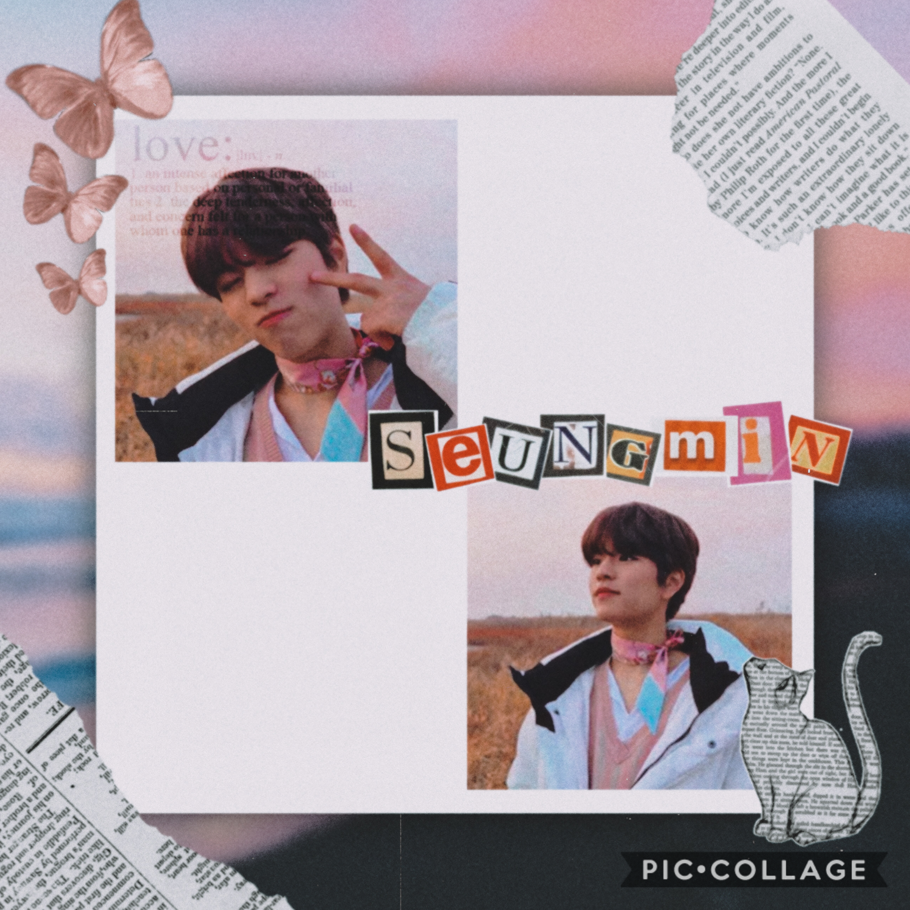 - 💖 -  Seungmin because Seungmin.  Man the only thing I like about this is the 2 pics 😂  The rest is just- 🤮