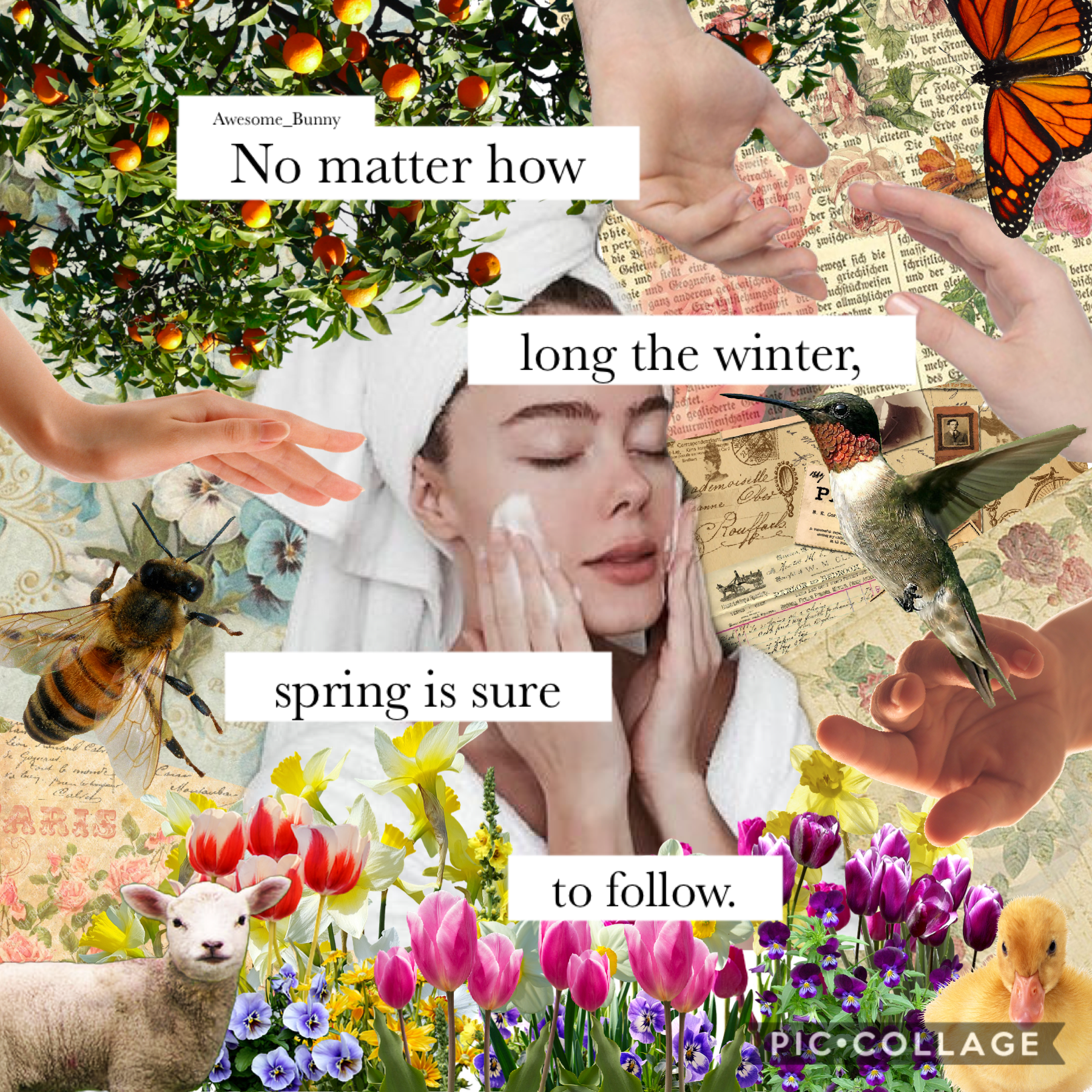 3/19/20 | Happy spring to my northern hemisphere peeps! It seems I have quite some time being trapped at home. Text inspired by @GemQuotes!