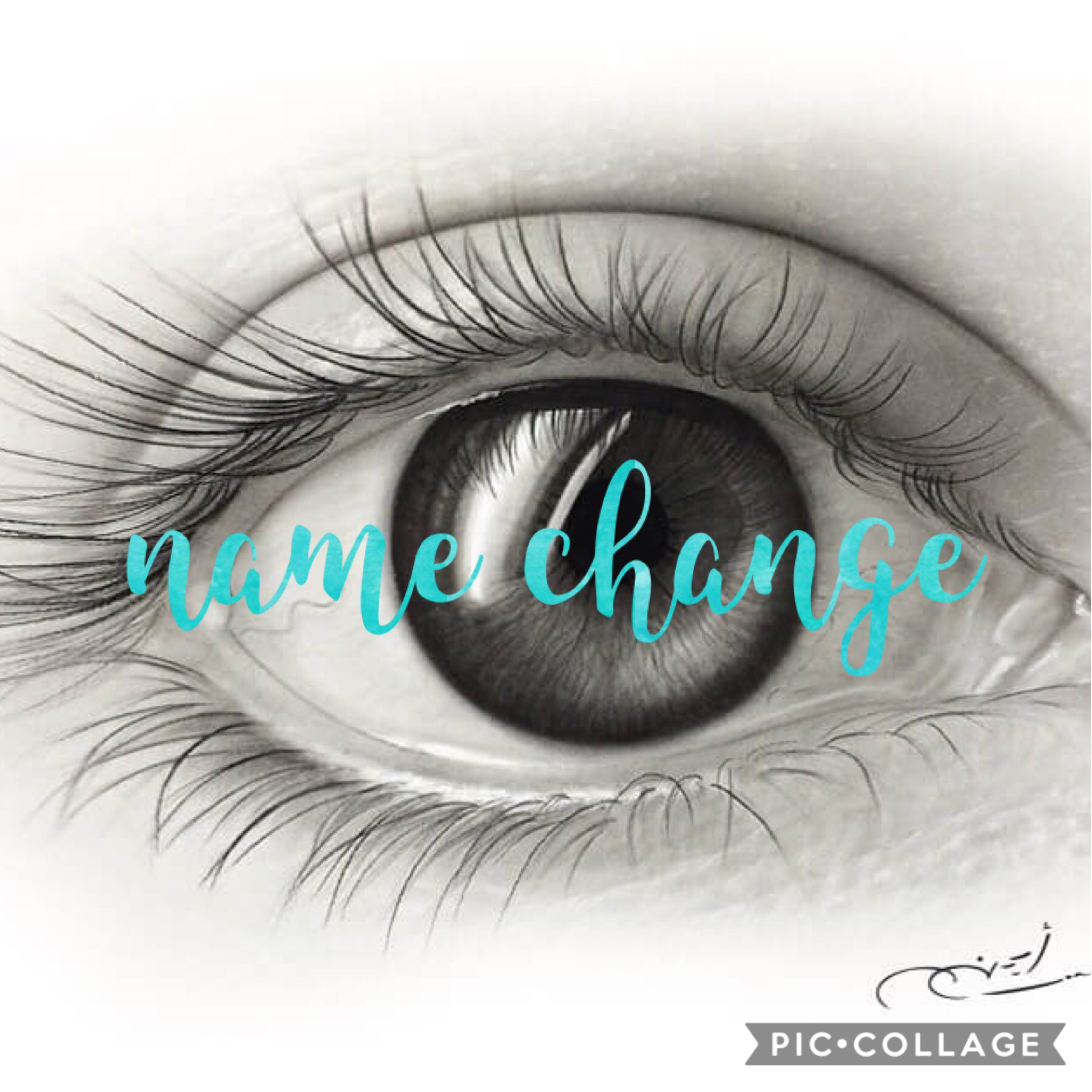 @wherearetheavocados < my new name as u already knoww