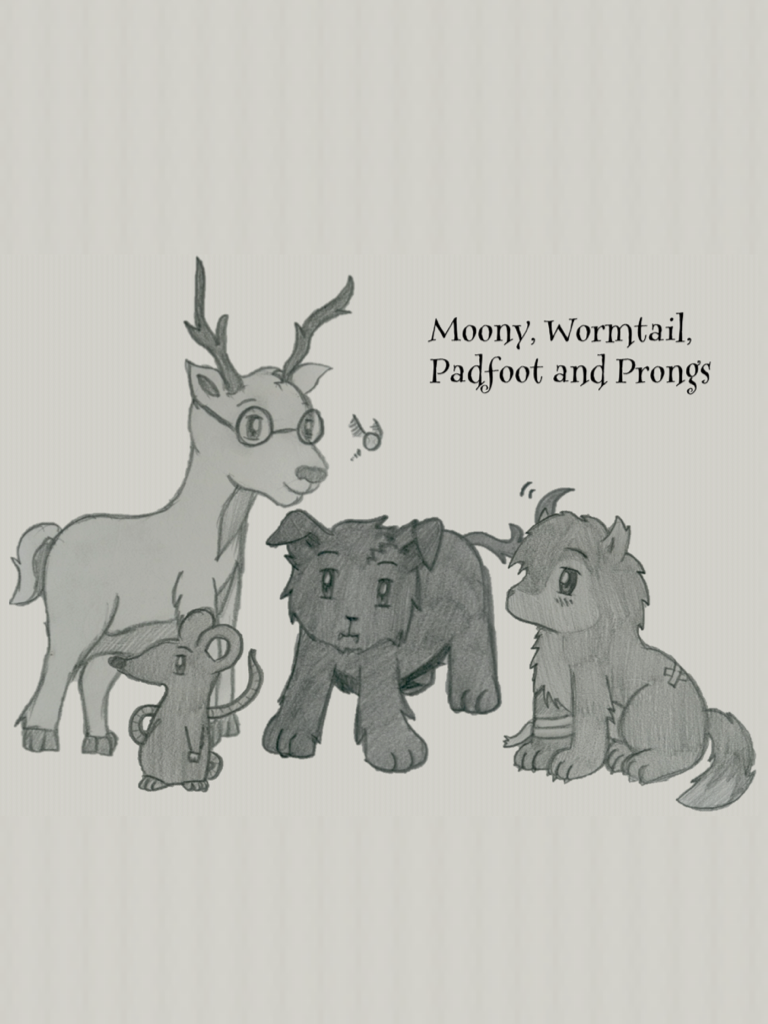 moony wormtail padfoot and prongs - 500×440